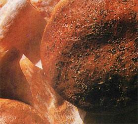 Recette de pain aux fines herbes