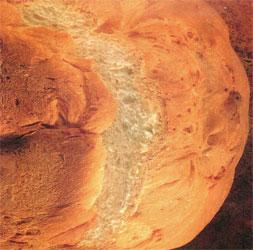Recette du pain au maïs et à la crème